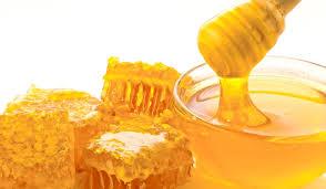 Angajez tânăr cu vârsta între 19 si 40 ani în apicultura